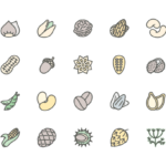 Set of Nuts, seeds and beans line icons